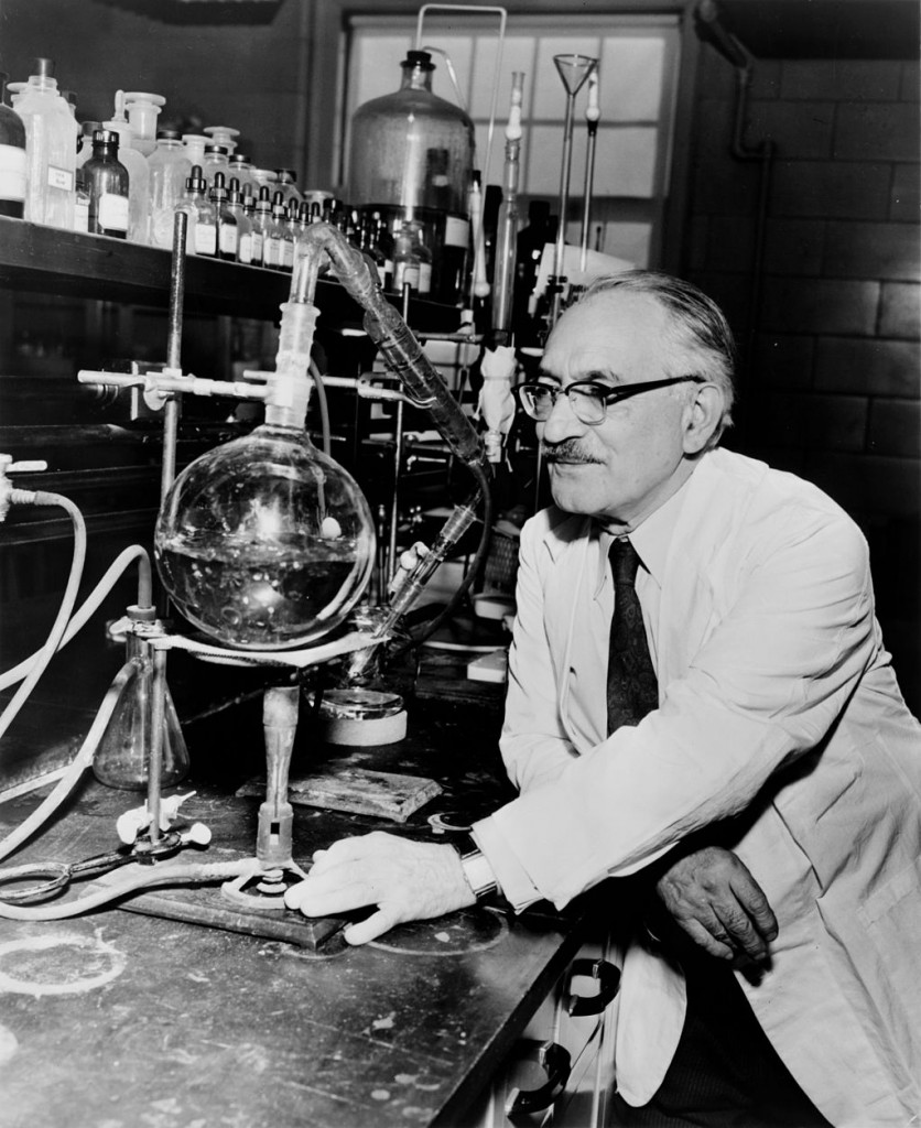 Dr. Selman Waksman in his Rutgers University lab, 1953. Photograph by New York World-Telegram and the Sun staff photographer Roger Higgins. [Public domain], via Wikimedia Commons.
